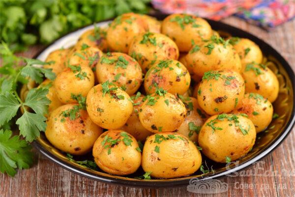 Мелкая молодая картошка с петрушкой